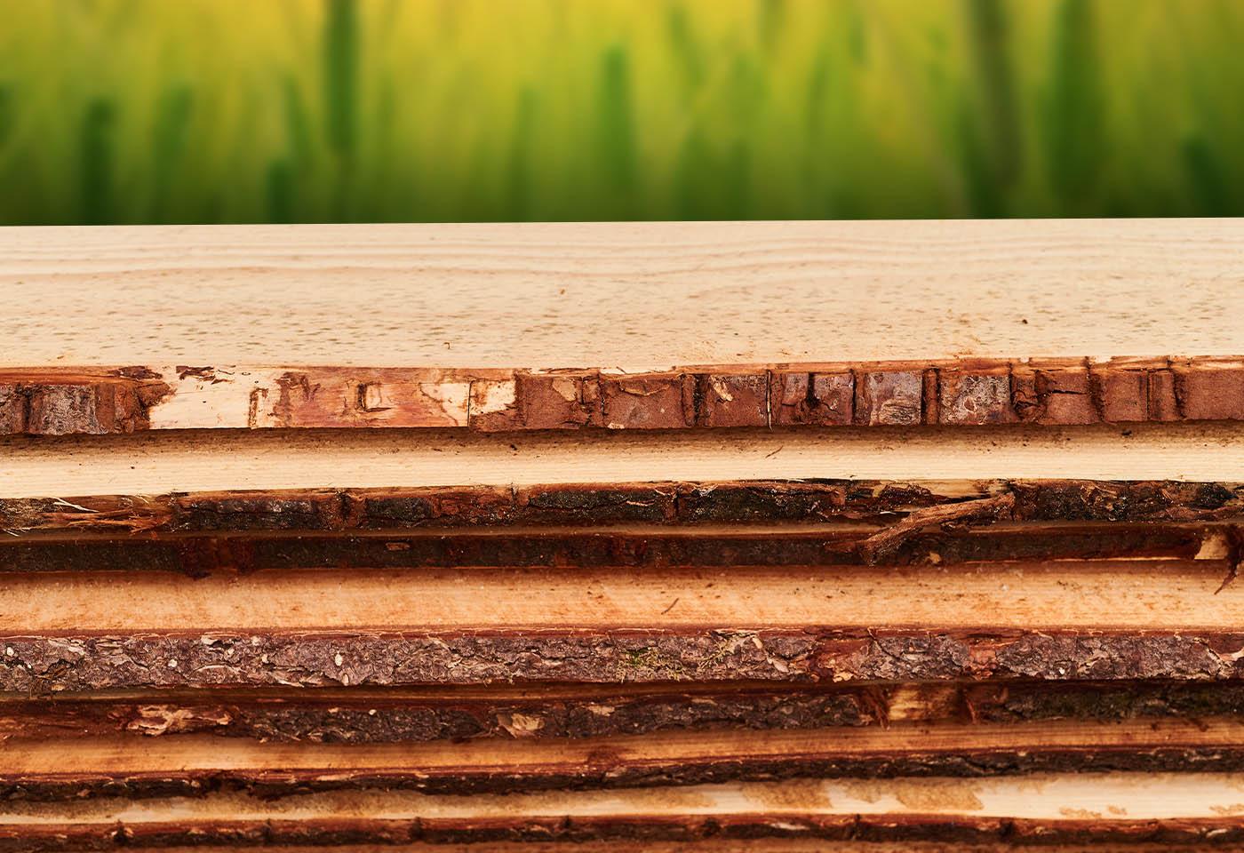 Eigenschappen van hout